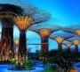 Сингапур жемқорлықты қалай жойды?